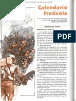 Calendario Fruticola 0 - 042