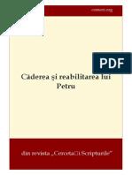 Căderea Şi Reabilitarea Lui Petru