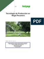 Tecnologia de Produccion de Nogal Pecanero