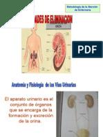 Diapositiva - Eliminacion Urinaria (Metodologia)