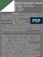 caracteristicas   del lulo.pps