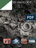 Flood Geology by CMI