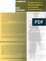 Acceso Justicia Pueblos Indígenas Resumen