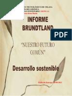 Resumen Informe Brundtland de 1987
