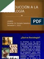 Sociologia Tema 1 Parte 1