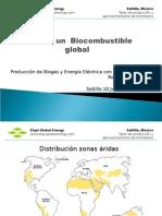El Nopal Biocombustible Global B
