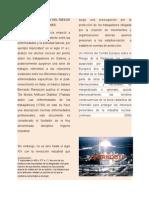Valor de La Gestión Del Riesgo en Las Organizaciones (Desastre de Chenobyl)