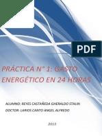 TRABAJO NUTRICION GASTO ENERGETICO TOTAL.pdf