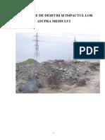 Depozitarea deseurilor si impactul asupra mediului.doc