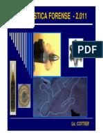 Teoria e Imagenes Balistica Forense Lic.cottier 2011