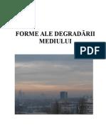 FORME ALE DEGRADARII MEDIULUI.doc