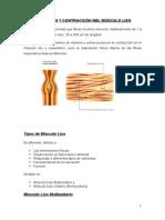 Fisiologia Practica Grupo 1