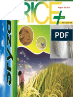 31st August,2015 Daily Exclusive ORYZA Rice E-Newsletter by Riceplus Magazine