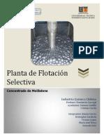 g4-Pfs Concentrado de Molibdeno
