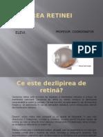 DEZLIPIREA RETINEI 2.