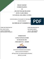 Internship Report B
