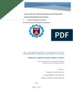Algoritmo Genetico - Inteligencia Artificial