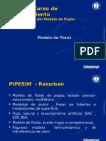 PIPESIM