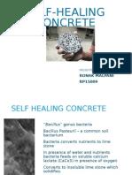 Bio Concrete