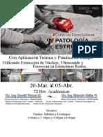 Brochure Detallado Curso Patologia Estructural