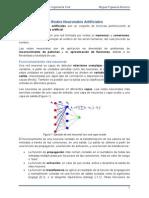 Introducción Redes Neuronales ArtificialesMFM