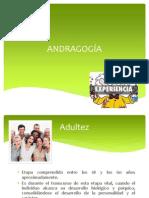 Unidad II (Andrgogía)