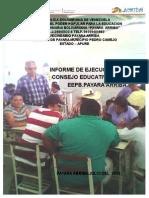 Informe de Ejecucion Del Plan de Accion Del Consejo Educativo.eepb Payara Arriba.