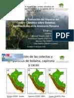 Cambio climático sobre sistemas Agroforestales