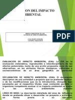 IMPACTOS AMBIENTALES EXPOSICION