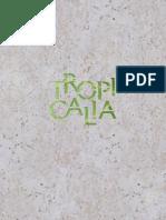 Reporte de Sostenibilidad Tropicalia - 2014