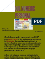 Vn - Codul Numeric Personal
