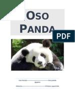 OsoPandaHistoria