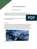 Diferencia entre desinfección y esterilización(1).pdf