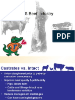 Beef Tour Grades, Palatability, Safety - Copia