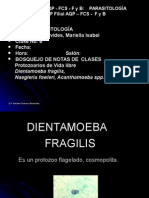 8va Clase Protozoarios de Vida Libre