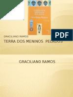 TERRA DOS MENINOS  PELADOS.pptx