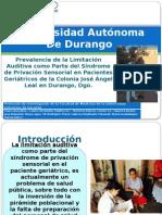 Presentacion de Protocolo de Audición Final