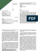Redes de Colaboracion Soldiaria-traduccion-final