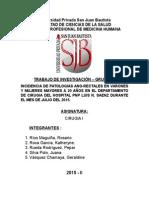 INCIDENCIA DE PATOLOGIAS ANO-RECTALES EN VARONES Y MUJERES MAYORES A 20 AÑOS EN EL DEPARTAMENTO DE CIRUGIA DEL HOSPITAL PNP LUIS N. SAENZ DURANTE EL MES DE JULIO DEL 2015.