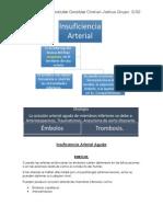 Insuficiencia Arterial Aguda Hernández González Cristian Joshua
