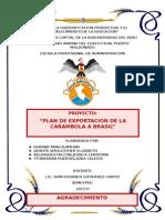 Mgfia Exportacion de Carambola a Chile