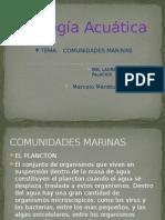 Comunidades Marinas Marcelo Mendoza i.a.s Ll Grupo f