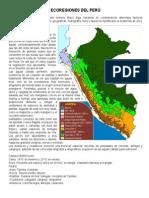 Ecoregiones Del Perú 26-08