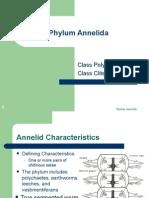 Power Point Phylum Annelia