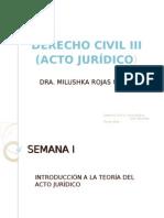 DER.CIV. III - Acto Jurídico I