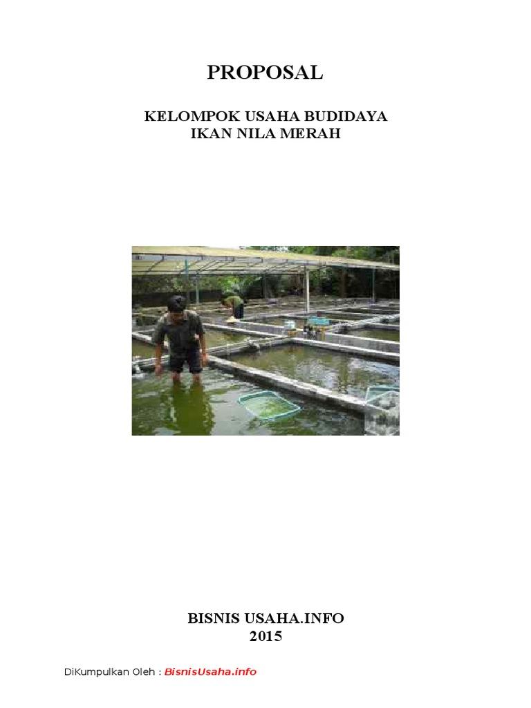 Proposal Bisnis Usaha Budidaya Ikan Nila Merah