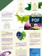 en-leaflet-harmonia.pdf