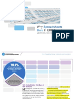 6. Why Spreadsheets Rule in ERP Domains
