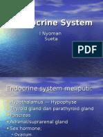 Endocrine Sytem