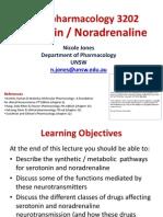 2. Serotonin and Noradrenaline
